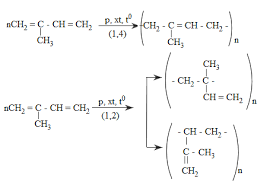 isopren trùng hợp