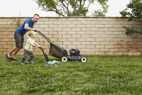3 loại máy cắt cỏ tốt nhất hiện nay